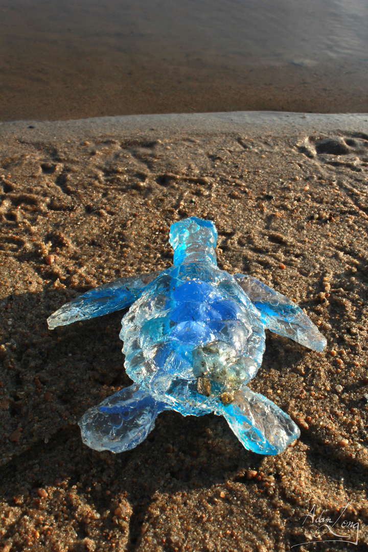 Baby Sea Turtle From The Feral Plastic Series By Adam Long Sculp