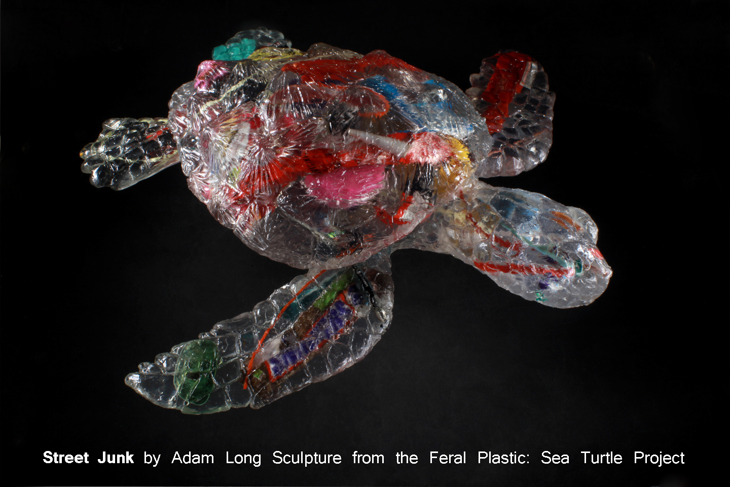 Street Junk: Feral Plastic™ Sea Turtle Project